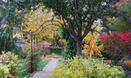 Gardeners' Cheeky Checklist