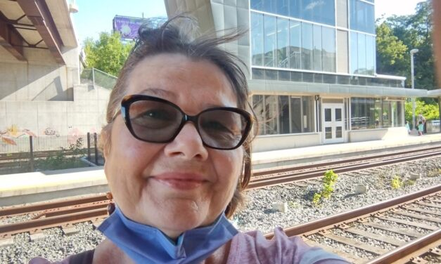 Linda's Chatty Walkabout – Riding the Go Train